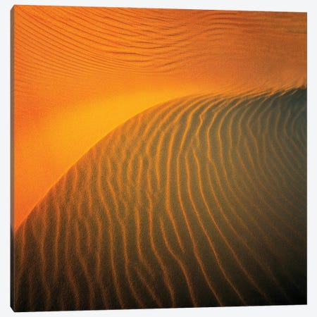 Sands Of Time Canvas Print #PEW70} by Peter Walton Canvas Art Print