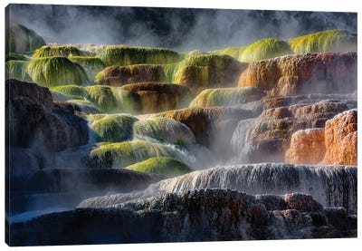 Steaming Yellowstone Rocks Canvas Art Print