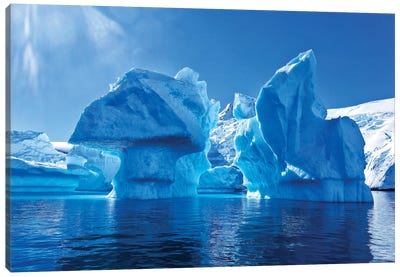 Blue Icebergs Canvas Art Print