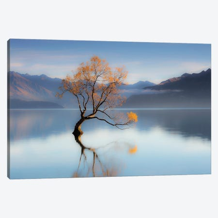 The Wanaka Tree Canvas Print #PEW83} by Peter Walton Canvas Wall Art