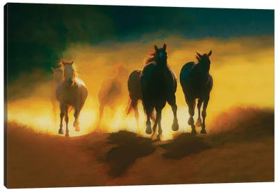 Thundering Hooves Canvas Art Print