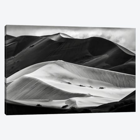 World's Highest Sand Dunes Mono Canvas Print #PEW89} by Peter Walton Canvas Artwork