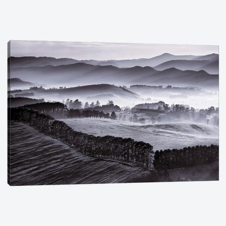 Yarra Valley Morning Canvas Print #PEW90} by Peter Walton Canvas Print