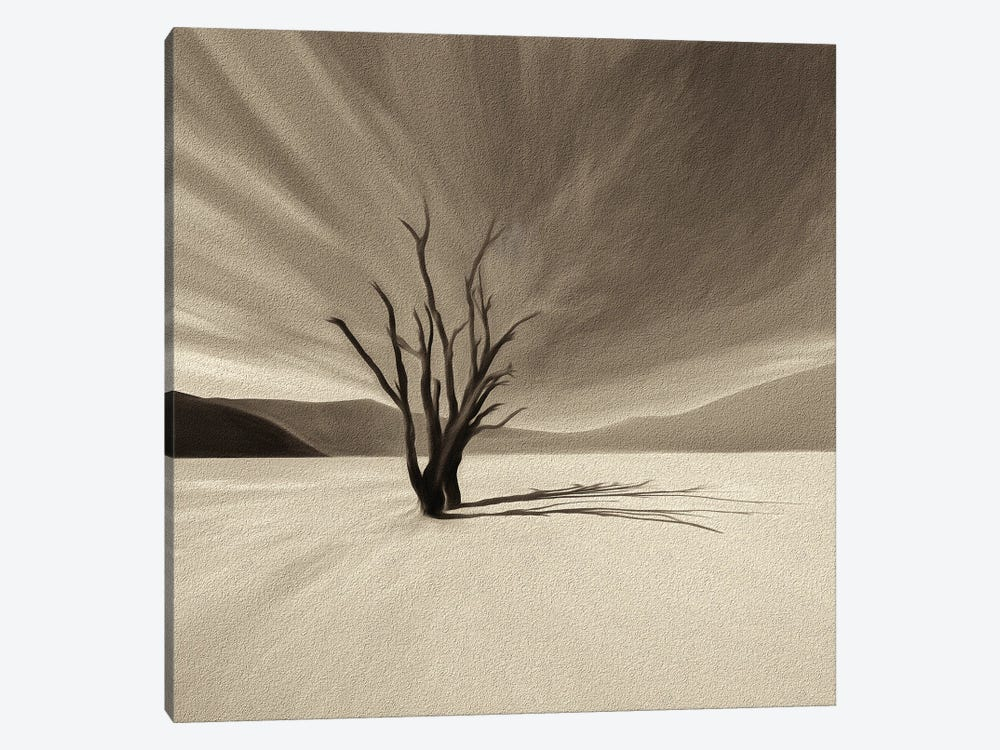 Camelthorn Tree by Peter Walton 1-piece Art Print