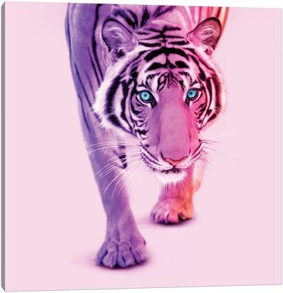 Color Tiger Canvas Art Print