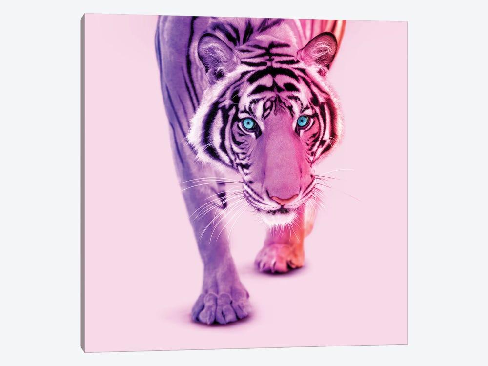 Color Tiger by Paul Fuentes 1-piece Canvas Print