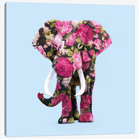 Floral Elephant Canvas Print #PFU13} by Paul Fuentes Canvas Art Print