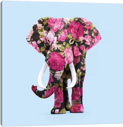 Floral Elephant Canvas Art Print