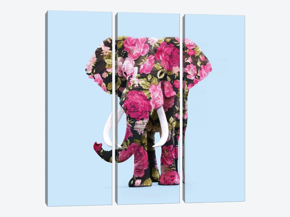 Floral Elephant by Paul Fuentes 3-piece Canvas Print