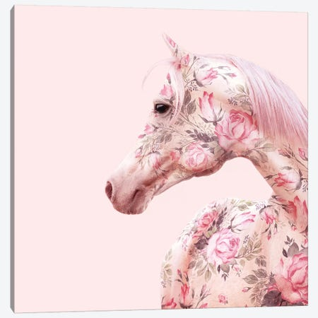 Floral Horse Canvas Print #PFU14} by Paul Fuentes Canvas Wall Art