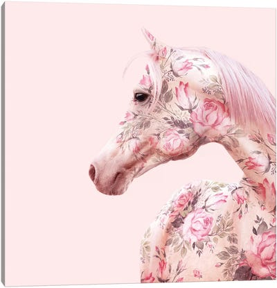 Floral Horse Canvas Art Print