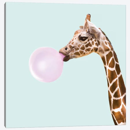 Giraffe Canvas Print #PFU19} by Paul Fuentes Canvas Print