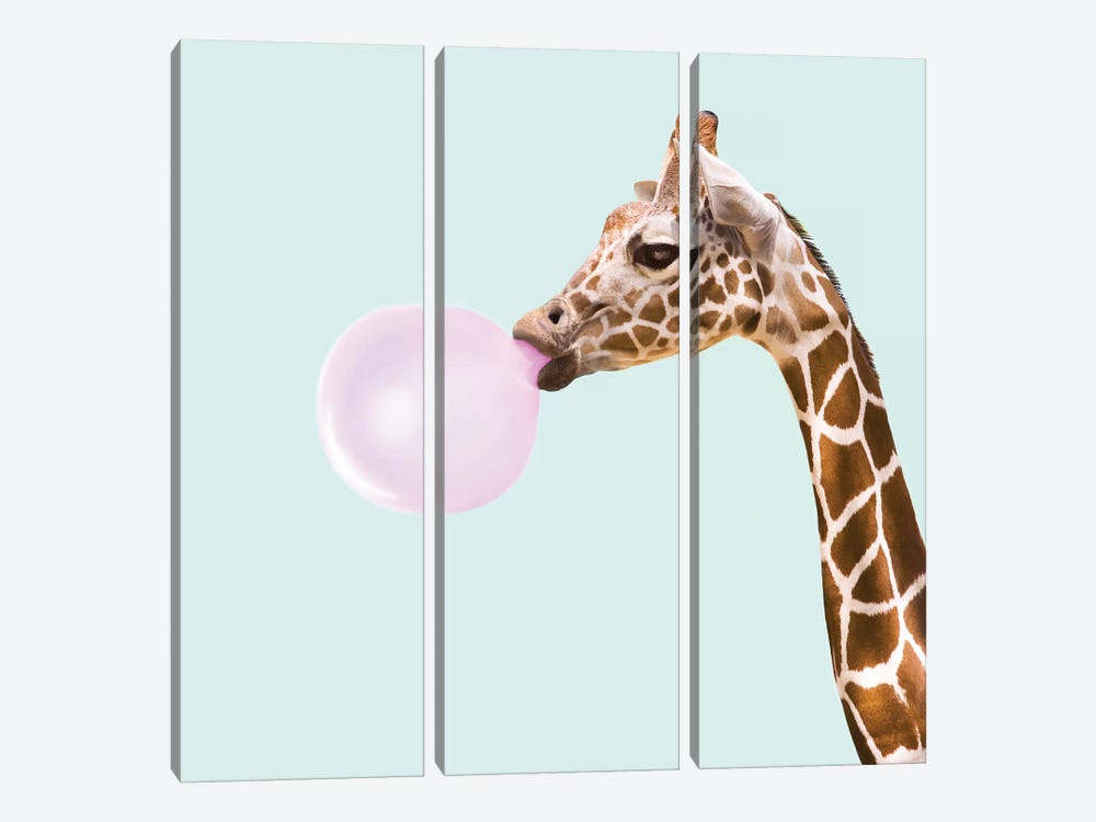 Giraffe by Paul Fuentes 3-piece Canvas Art Print