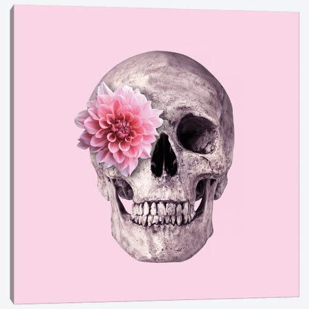 Pink Skull Canvas Print #PFU43} by Paul Fuentes Canvas Wall Art