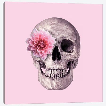 Pink Skull Canvas Print #PFU43} by Paul Fuentes Canvas Wall Art