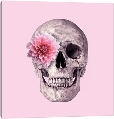 Pink Skull Canvas Art Print