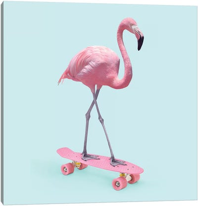 Skate Flamingo Canvas Art Print