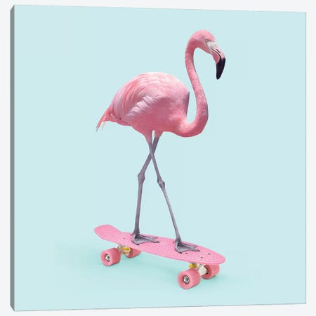Skate Flamingo 3-Piece Canvas #PFU48} by Paul Fuentes Canvas Art