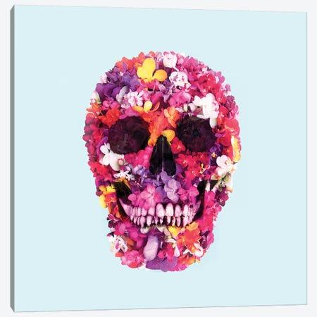 Spring Skull Canvas Print #PFU50} by Paul Fuentes Canvas Print