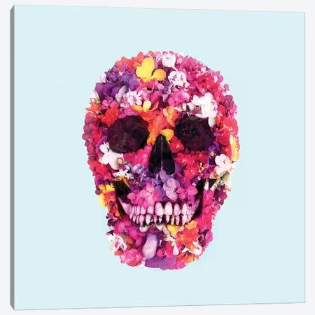 Spring Skull Canvas Print #PFU50} by Paul Fuentes Canvas Print