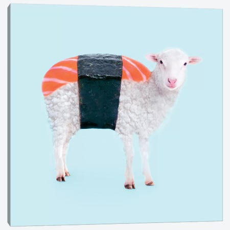 Susheep Canvas Print #PFU51} by Paul Fuentes Canvas Print