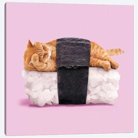 Sushi Cat Canvas Print #PFU52} by Paul Fuentes Canvas Print