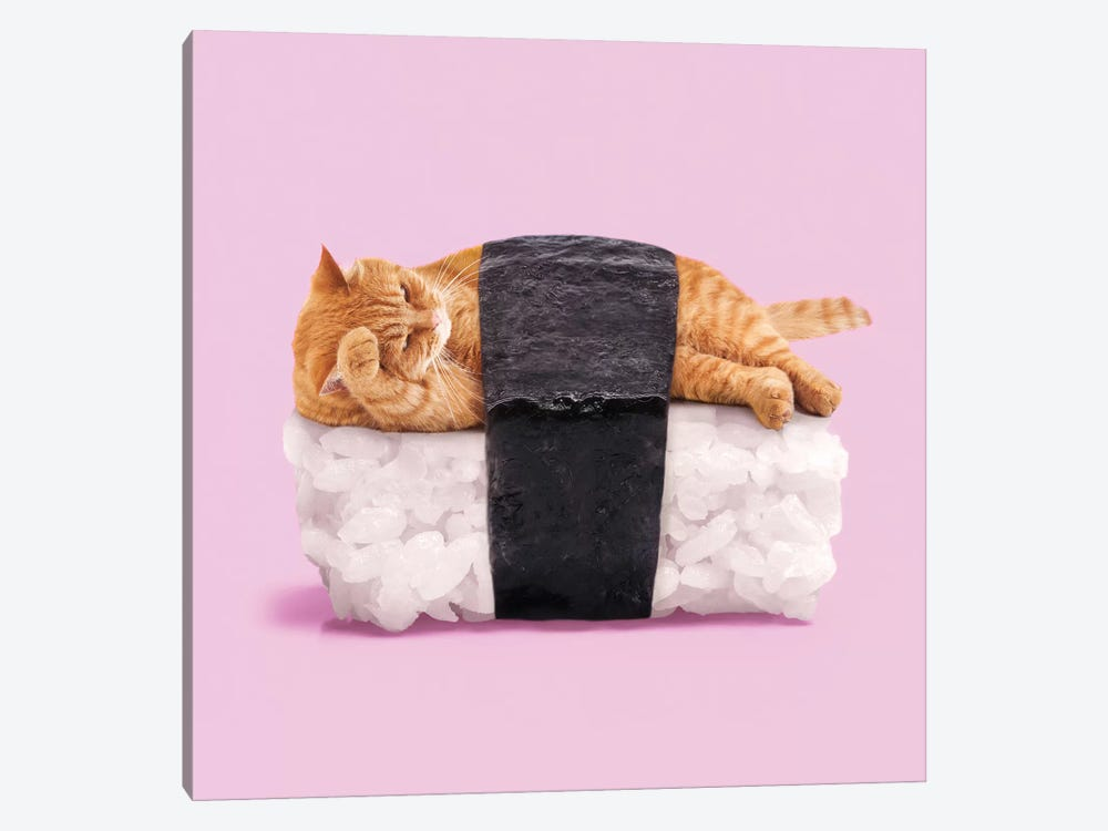 Sushi Cat by Paul Fuentes 1-piece Canvas Wall Art