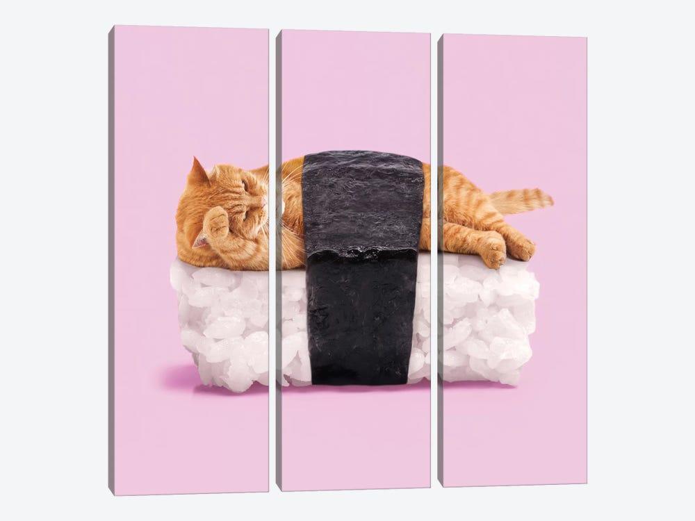 Sushi Cat by Paul Fuentes 3-piece Canvas Artwork