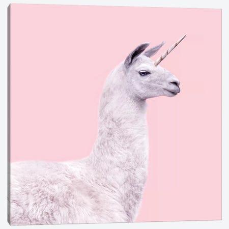 Unicorn Llama Canvas Print #PFU56} by Paul Fuentes Canvas Artwork