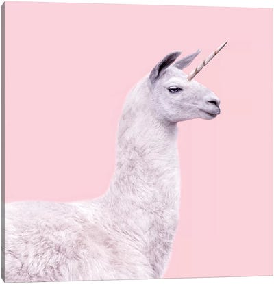 Unicorn Llama Canvas Art Print