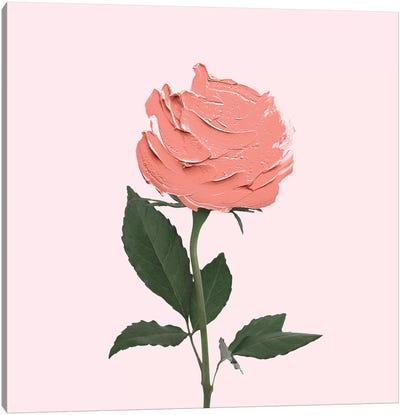 Stroke Rose Canvas Art Print