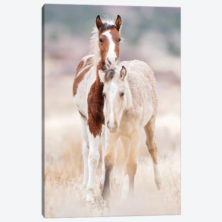 Collection of Horses X Canvas Print #PHB107} by PHBurchett Canvas Artwork