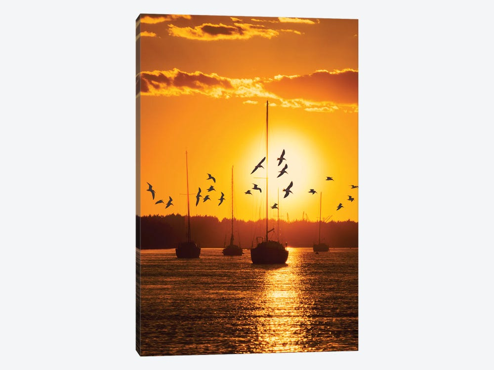 Water & Land II 1-piece Canvas Wall Art