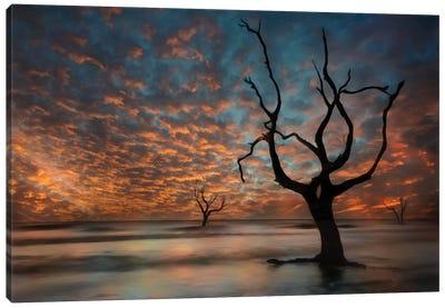 Water & Land V Canvas Art Print