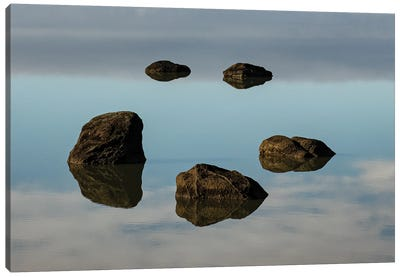 Water & Land VIII Canvas Art Print