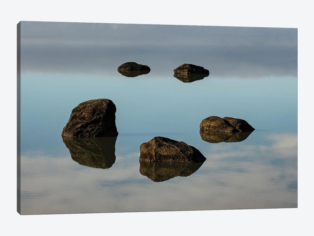 Water & Land VIII by PHBurchett 1-piece Canvas Art