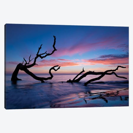 Driftwood Beach Canvas Print #PHB1} by PHBurchett Canvas Artwork