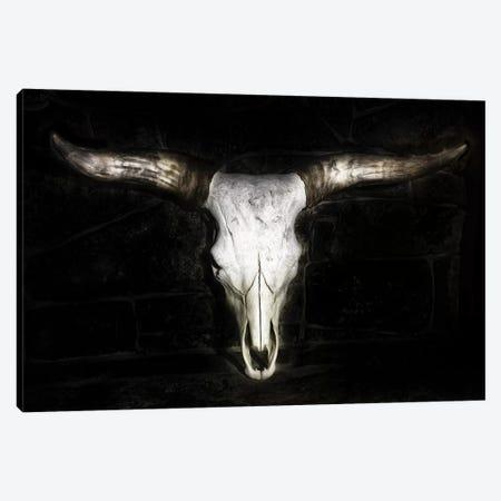 Cow Skull Canvas Print #PHB29} by PHBurchett Canvas Artwork