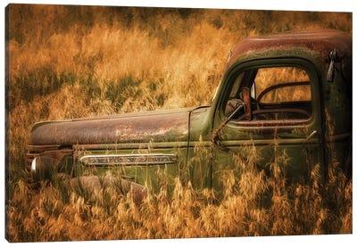 Farm & Field V Canvas Art Print