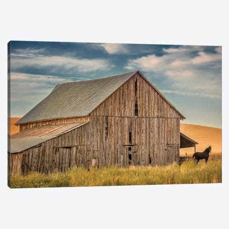 Farm & Field VI Canvas Print #PHB35} by PHBurchett Canvas Wall Art