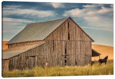 Farm & Field VI Canvas Art Print