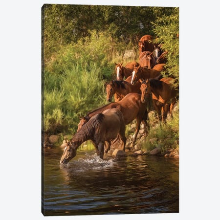 River Horses I Canvas Print #PHB54} by PH Burchett Canvas Artwork