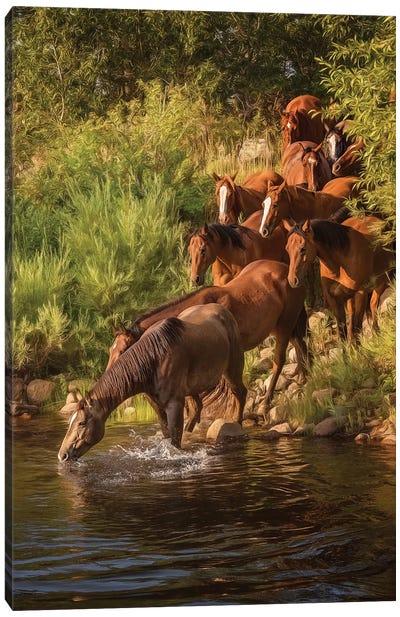 River Horses I Canvas Art Print