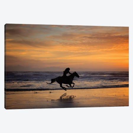 Sunkissed Horses IV Canvas Print #PHB59} by PHBurchett Canvas Art Print