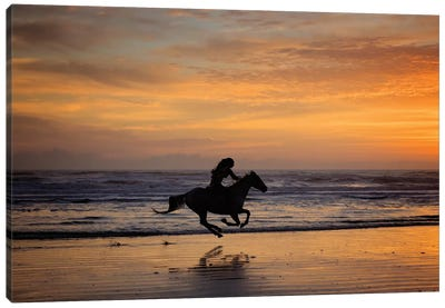 Sunkissed Horses IV Canvas Art Print