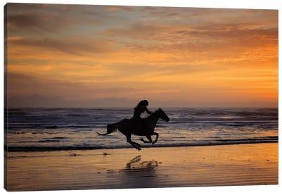 Sunkissed Horses IV Canvas Art Print