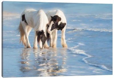 Water Horses I Canvas Art Print