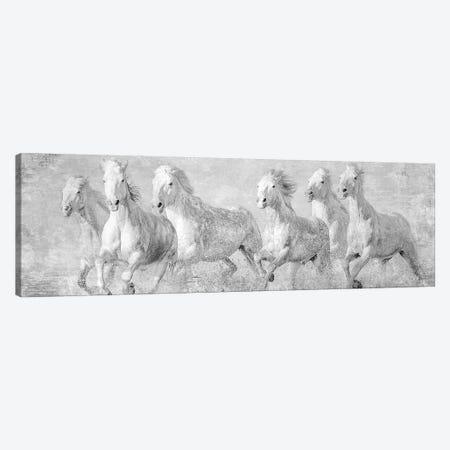 Water Horses V Canvas Print #PHB66} by PH Burchett Canvas Art Print