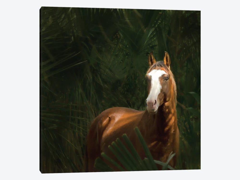 Wild II by PHBurchett 1-piece Canvas Art Print