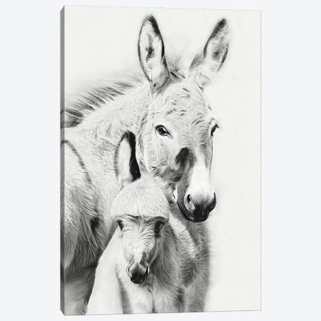 Donkey Portrait V 3-Piece Canvas #PHB79} by PH Burchett Art Print